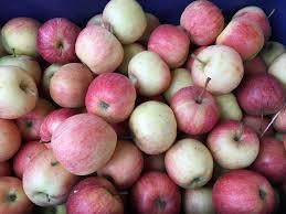 Pommes cabionnette